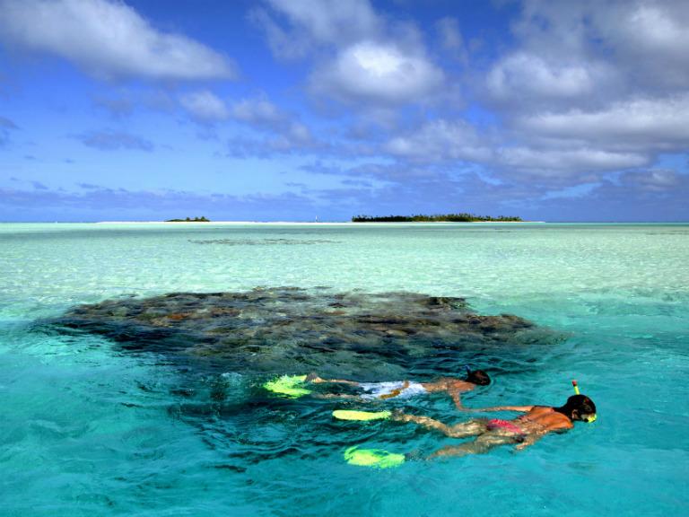 snorkellin off rarotonga